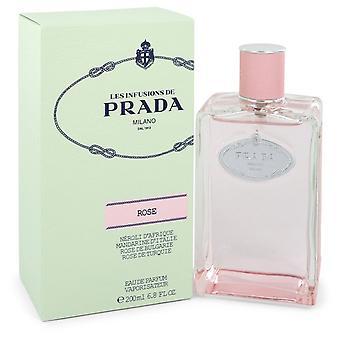 Prada Infusion De Rose by Prada Eau De Parfum Spray 6.8 oz