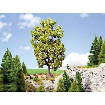 NOCH 0021781 Tree Basswood 185 mm 1 pc(s)