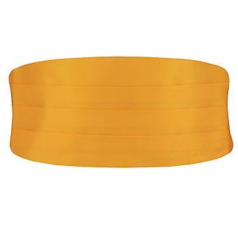 Doball jongens oranje Cummerbund aanpasbaar aan taille Tuxedo bruiloft accessoire