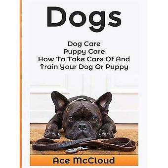 Dogs: Dog Care: Puppy Care: How to Take Care of� and Train Your Dog or Puppy (Essentials for Dog Care & Puppy Care Along)