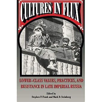 Kulturen in Bewegung: Unterschicht Werte, Praktiken und Widerstand im späten kaiserlichen Russland