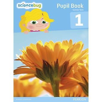 Science Bug Pupil Book Year 1 by Debbie Eccles