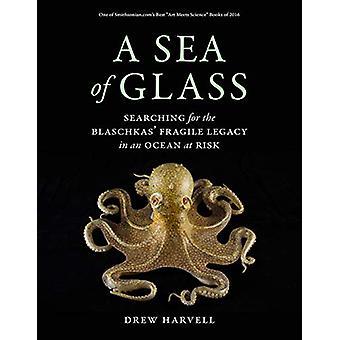 Et hav av Glass - søker etter Blaschkas' skjøre arven i en Oce