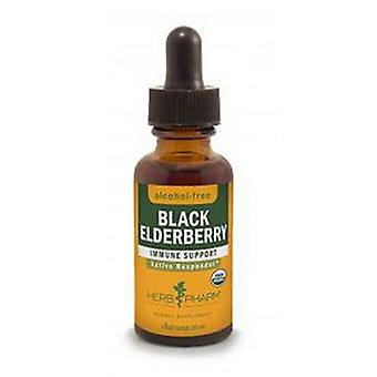 Herb Pharm Black Elderberry Glycerite, 4 Oz