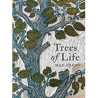 Trær av livet