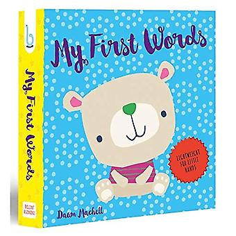 My First Words (Brilliant Beginnings)
