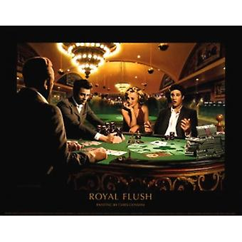 Royal Flush Juliste Tulosta Chris Consani (14 x 11)