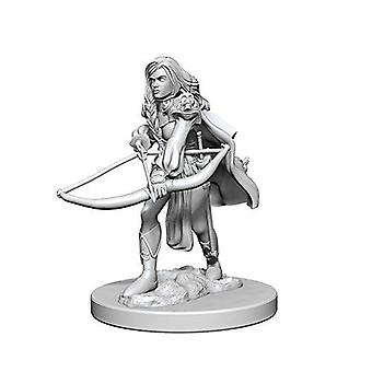 Pathfinder Deep Cuts Unpainted Miniatures Human Female Fighter (Pack of 6)