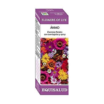 Flower of Life Sense of Life 15 ml of floral elixir