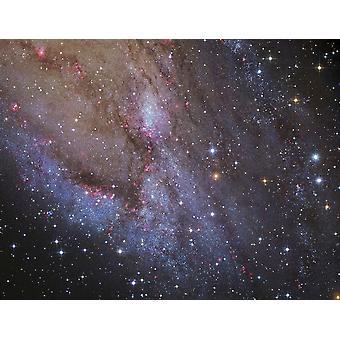 Le bras de spirale sud-ouest de Messier 31 Poster Print