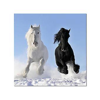 Tafel tafel foto paarden