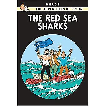 Röda havet hajar (Tintins äventyr)