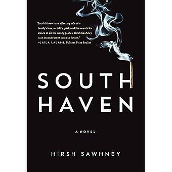 South Haven: Een roman