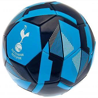 Tottenham Hotspur Football RX