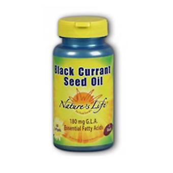 Nature's Life Black Currant Seed Oil, 1200 mg, 60 softgels