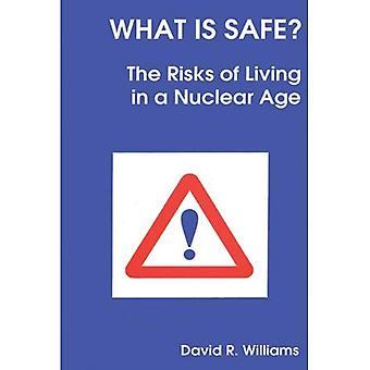 Wat Is veilig? : Risico's van het leven in een nucleaire tijdperk