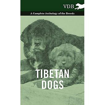 Tibetan Dogs  A Complete Anthology of the Breeds by Various