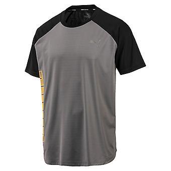 Puma coletivo alto Mens fitness Training T-shirt tee Grey/preto
