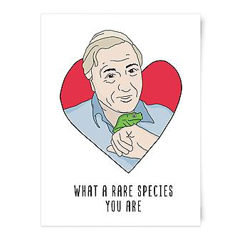 What A Rare Species You Are Art Print