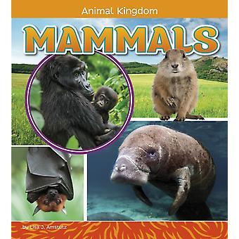 Mammals by Lisa Jo Amstutz