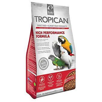 Hagen High Energy Formula for Parrots (Birds , Bird Food)