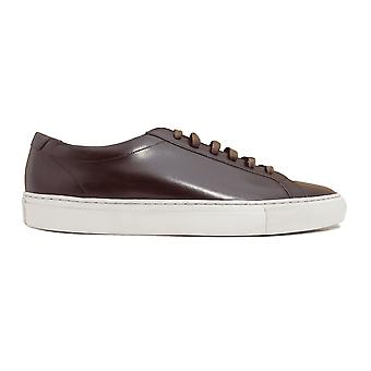 Loake Sprint Dark Brown Painted Calf Leather Mens Lace Up Trainers