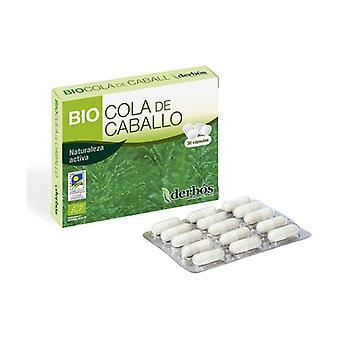 Bio Horsetail 30 capsules