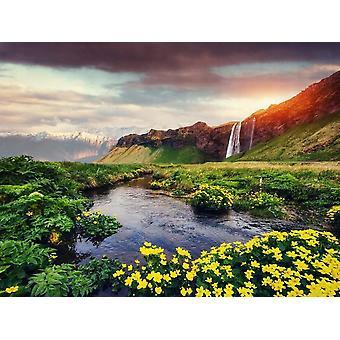 Tapet väggmålning Seljalandfoss vattenfall Island