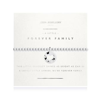 """ג'ומה תכשיטים זוהרים קצת כסף משפחתי לנצח 17.5 ס""""מ מתיחה צמיד 4213"""