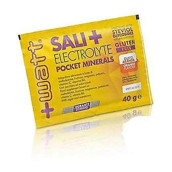 Sali + Electrolyte Pocket Minerals Arancia 40 g of powder