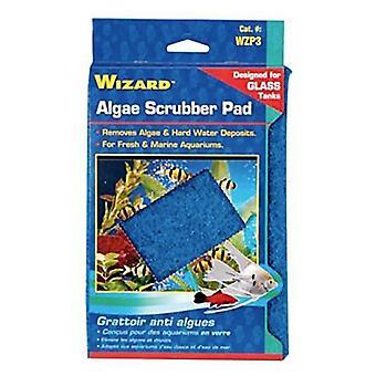 """Penn Plax Wizard Algae Scrubber Pad för glas akvarier - 6""""L x 9""""W - 1 räkning"""