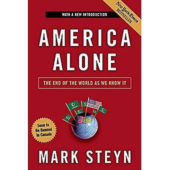 Amerika ensam