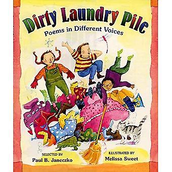 Pilha de roupa suja: Poemas em vozes diferentes