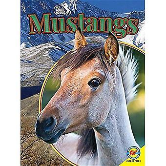 Mustangs (om hästar)
