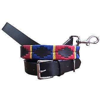 Carlos diaz genuine leather  polo dog collar and lead set cdhkplc73
