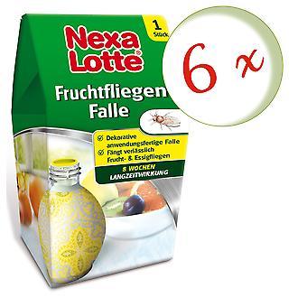 Sparset: 6 x NEXA LOTTE® fruit fly trap, 1 piece