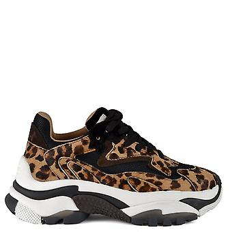 Ash ADDICT TER Sneakers Cheetah Pony Hair & Brown Suede