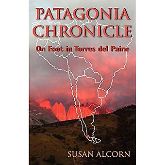 Patagonia Chronicle: On Foot in Torres del Paine