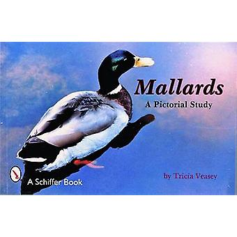 Mallards - A Pictorial Study by T. Veasey - 9780887401169 Book