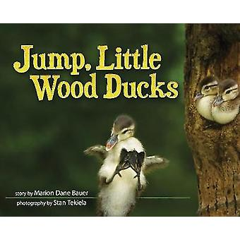 Jump - Little Wood Ducks by Marion Dane Bauer - 9781591935858 Kirja