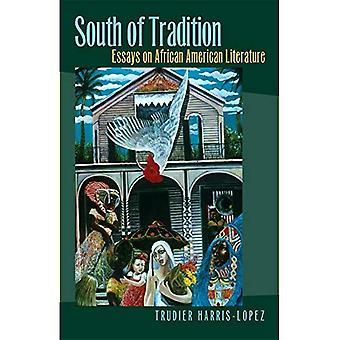 Ten zuiden van de traditie: Essays on African American Literature