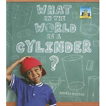 What in the World Is a Cylinder? (SandCastle: 3-D Shapes)
