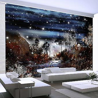 Fotobehang - Night in the forest