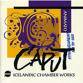 Leifs/Masson/Grimsson/Brigisson - isländische Kammermusikwerke: Animato [CD] USA Import