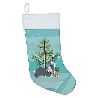 Bearded Collie koira hyvää joulu kuusi joulu sukat