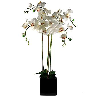 90cm Orquídea Artificial Blanco en Ceramic Cube Planter