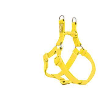 Freedog Basic Nylon seldon skriver en gul
