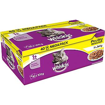 Whiskas Pouch 1 + pluimvee selectie In Jelly 40x100g