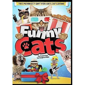 Funny Cats [DVD] USA import