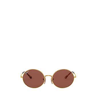 Ray-Ban RB1970 arista unisex sunglasses